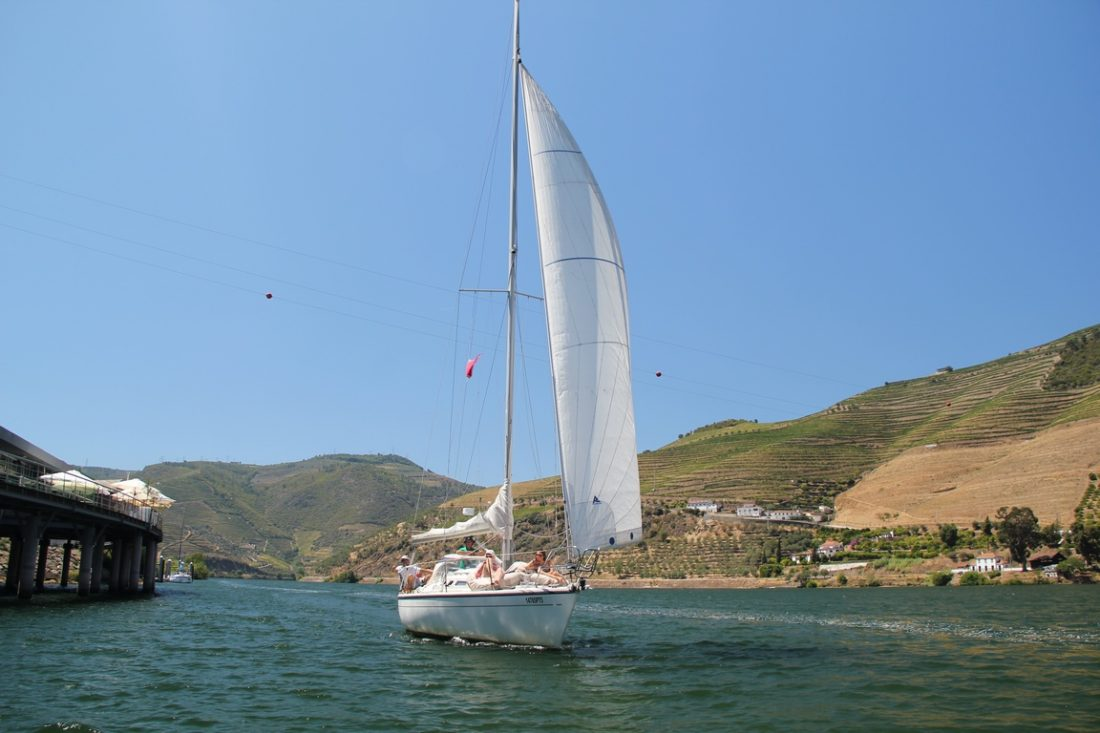 Boat Trip with Wine Tour in Douro Region