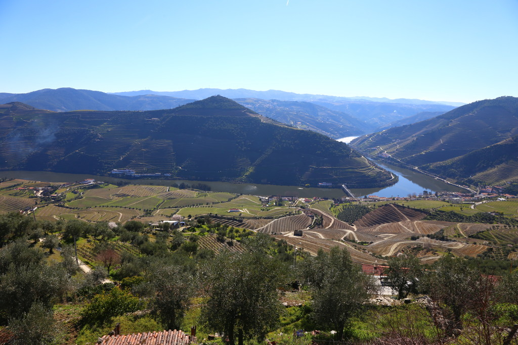 Full day walking tour in Douro Valley